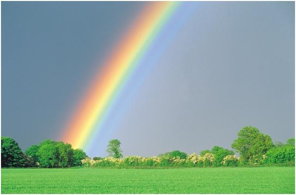 miscarriage and stillbirth – rainbow