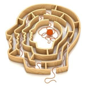 Brain-Wool