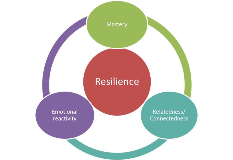 Resilience in Teens