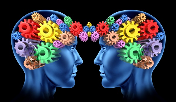 minds brain