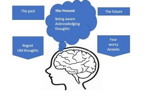 mindfulness timeline