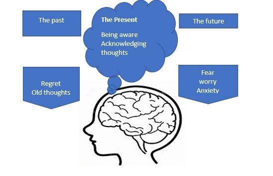 mindfulness timeline MS